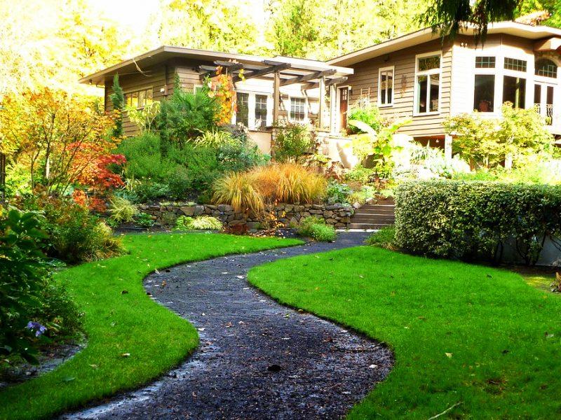 Upgrade Your Landscape Upkeep with Bradenton Tree Removal